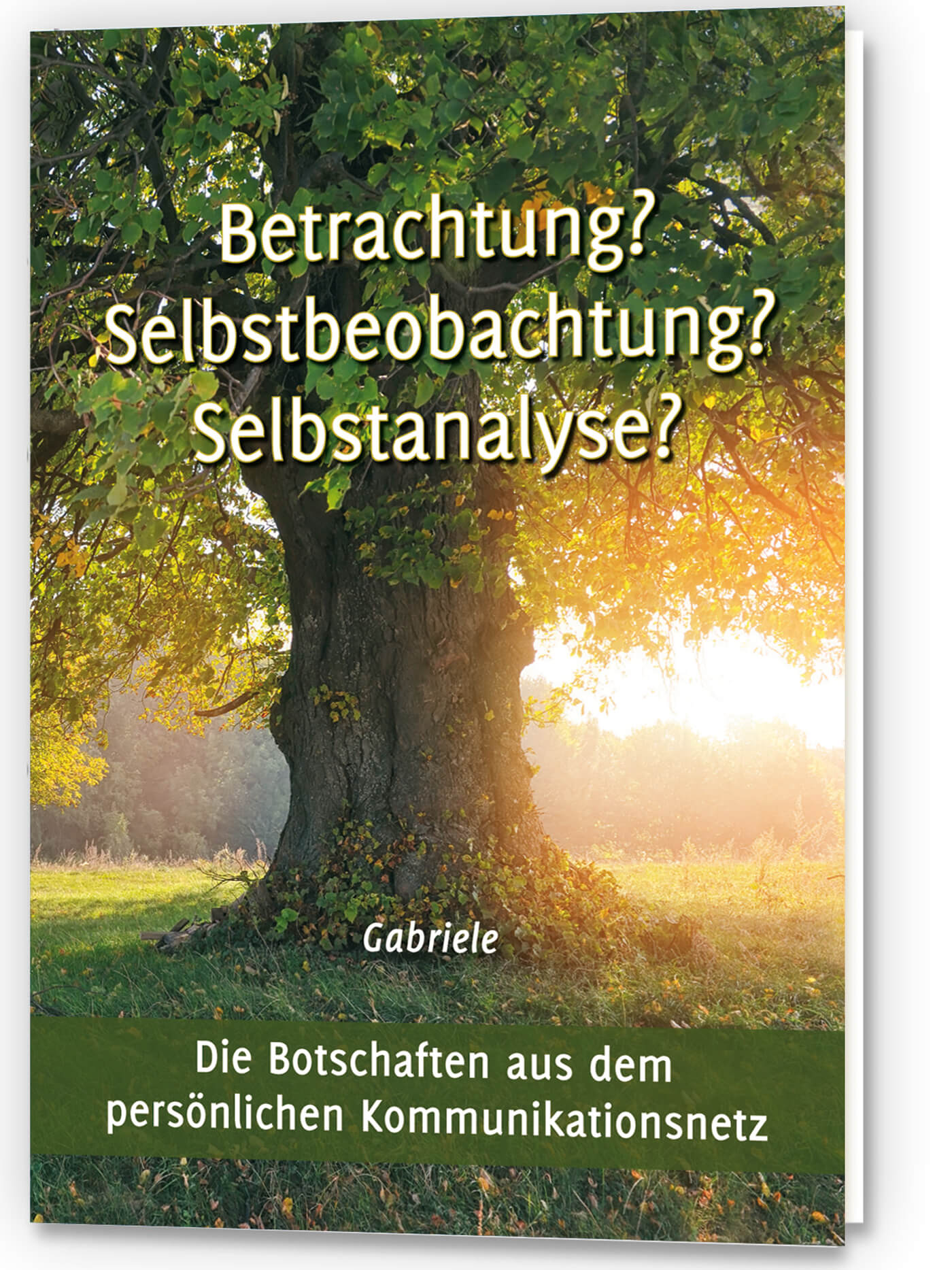 Betrachtung? Selbstbeobachtung? Selbstanalyse?